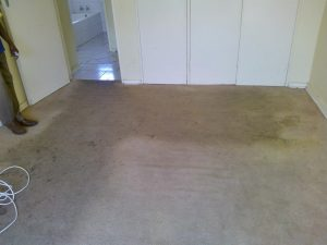 wall to wall carpet cleaning before